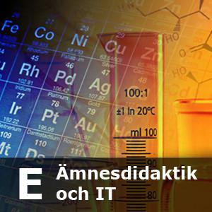 Kategori_E_Amnesdidaktik_IT_300x300